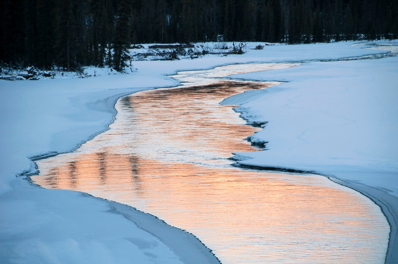February 21, 2014<br /> <br /> Athabasca River<br /> <br />  Jasper National Park, Alberta