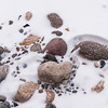 January 6, 2015<br /> <br /> Rocks in Snow<br /> <br /> Jasper National Park, Alberta<br /> <br /> * For the month of January, I will once again be posting images from my annual trips to Jasper in January