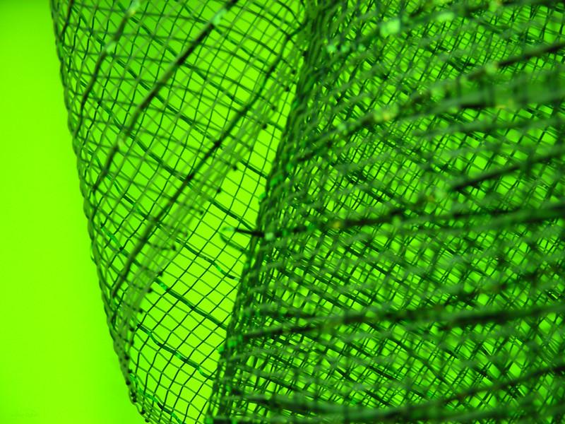 December 2, 2012<br /> <br /> Lime Green Ribbon<br /> <br /> Abstract<br /> <br /> Enjoy Centre<br /> St. Albert, Alberta
