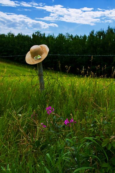 "August 18, 2011<br /> <br /> ""Summer Retreat""<br /> <br /> Elk Island Retreat<br /> Near Fort Saskatchewan, Alberta"