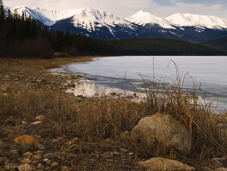 """April 1, 2011<br /> <br /> """"Spring in Jasper""""<br /> <br /> Patricia Lake<br /> Jasper National Park, Alberta<br /> <br /> * This image was take in April of 2009. It is almost hard to tell the difference between fall and spring. The temperatures have been quite mild in Jasper so I imagine it looks a lot like this right now."""
