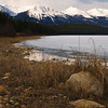 "April 1, 2011<br /> <br /> ""Spring in Jasper""<br /> <br /> Patricia Lake<br /> Jasper National Park, Alberta<br /> <br /> * This image was take in April of 2009. It is almost hard to tell the difference between fall and spring. The temperatures have been quite mild in Jasper so I imagine it looks a lot like this right now."