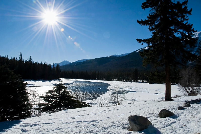 December 27, 2012<br /> <br /> Fun in the Sun<br /> <br /> Athabasba River<br /> Jasper National Park, Alberta<br /> <br /> * We are heading to Jasper to bring in the New Year. I go to Jasper annually, in January, to shoot the winter landscapes. We are going earlier in the year than we normally do but I am hoping we will have warmer temperatures this time!! This image was taken on a day trip to Jasper in February. I have soooooooo many pictures, from so many trips, that I have not done anything with. I gotta get crackin' in the new year!