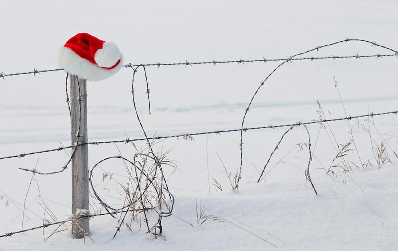 December 26, 2012<br /> <br /> Until next year...<br /> <br /> Rural Alberta<br /> Elk Island Retreat