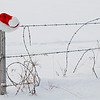 December 26, 2012<br /> <br /> Until next year...<br /> <br /> Rural Alberta<br /> Elk Island Retreat