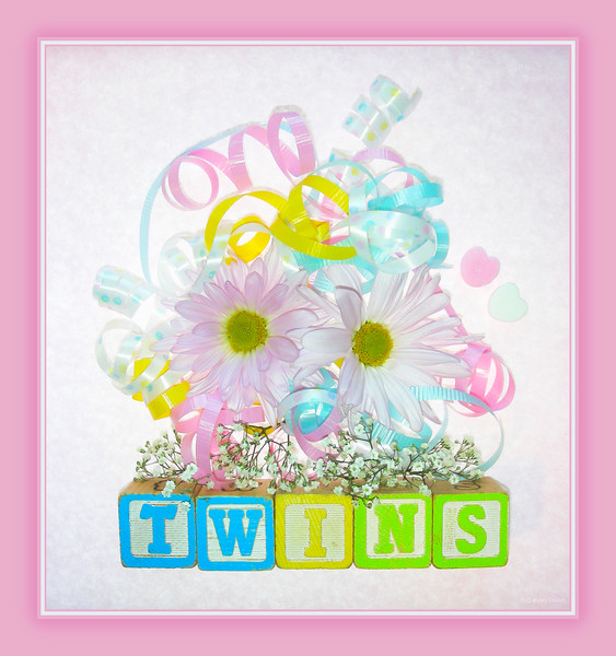 September 27, 2014<br /> <br /> Twins<br /> <br /> * I am attending a baby shower today for my twin nieces, who are due October 28th!! <br /> Congratulations to my brother, Kelan, and his g/f, Jess!!<br /> I AM SOOO EXCITED!