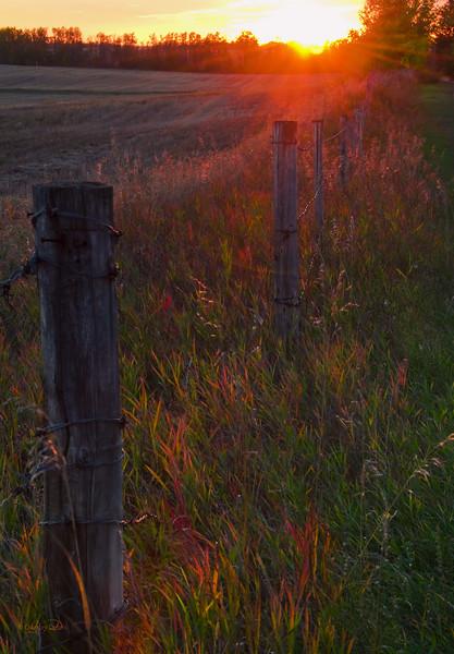 "February 19, 2011<br /> <br /> ""Sundown on the Prairie""<br /> <br /> Elk Island Retreat, Alberta"