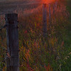 "February 19, 2011<br /> <br /> ""Sundown on the Prairie""<br /> <br /> Elk Island Retreat, Alberta"