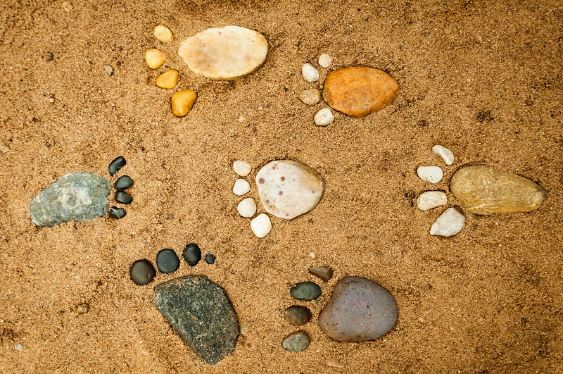 July 24, 2014<br /> <br /> Rock Feet<br /> <br /> * Here is another shot from my Rock shoot :) I was trying to make this collage of rock feet look like hieroglyphics.