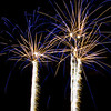 "February 4, 2011<br /> <br /> ""Celebrate""<br /> <br /> Jasper in January Fireworks<br /> Centennial Park<br /> Jasper, Alberta"