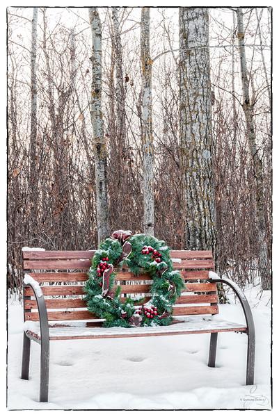 Winter Wreath