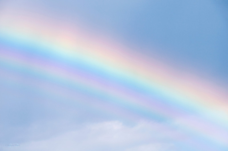 """October 15, 2011  """"Somewhere Over the Rainbow""""  Elk Island Retreat Near Fort Saskatchewan, Alberta  * <i>What's In A Name?</i>~ For the month of October I am playing a <i>Name Game</i>. I am challenging myself to use a song title as the image title."""