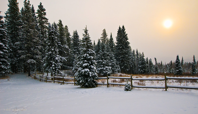 "Day Fifty<br /> <br /> ""Early Winter""<br /> <br /> Cheechako Cabins<br /> Nordegg, Alberta"