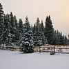 "Day Fifty<br /> <br /> ""Early Winter""<br /> <br /> Cheechako Cabins<br /> Nordegg, Alberta"