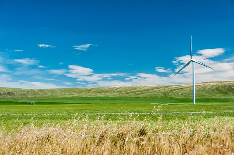 Power in the Prairies