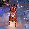December 20, 2012<br />  <br /> Rudolph the Red-Nosed Reindeer<br /> <br />  I have challenged myself to post Christmas images for the next 12 days of Christmas. I hope to create a few Christmas cards for next year. I hope you enjoy the series and encourage all to join me :)<br /> <br />  * Last night we took Christmas photos at Maisie's Magical Christmas House. It is truly amazing and magical. I love all the lights!! I just wish it was warmer!! Minus 25 is a little chilly! Might have to try it again in milder conditions :)<br /> <br /> Maisie's Magical Christmas House<br /> Edmonton, Alberta