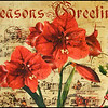December 14, 2012<br /> <br /> Seasons Greetings<br /> <br /> I have challenged myself to post Christmas images for the next 12 days of Christmas. I hope to create a few Christmas cards for next year. I hope you enjoy the series and encourage all to join me :)<br /> <br /> * This is an image of a cover on a Christmas trunk which I saw at the Enjoy Centre on a camera club outing. I would have loved to show the entire trunk but the background was very distracting, as it was in a store.