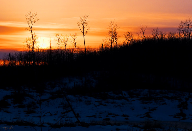 """April 10, 2011<br /> <br /> """"Spring Sunset""""<br /> <br /> Elk Island National Park, Alberta<br /> <br /> * This is one of my favorite places to shoot in Elk Island Park. I love how it changes with the seasons."""