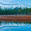 Rocky Mountain Reverie