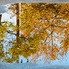 Puddle on the Pavement