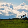 "August 30, 2011<br /> <br /> ""Alberta Royalty""<br /> <br /> Rural Alberta"
