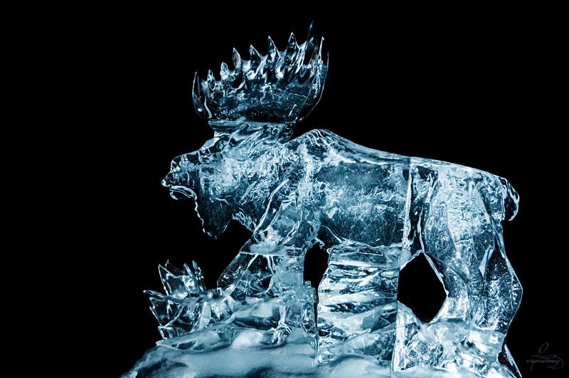 Ice Moose