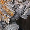 Weathered Wood