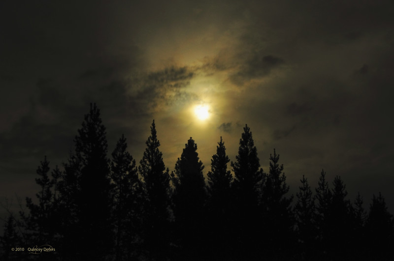 "Day Thirty-Three<br /> <br /> ""Night Light""<br /> <br /> Elk Island Retreat, Alberta"