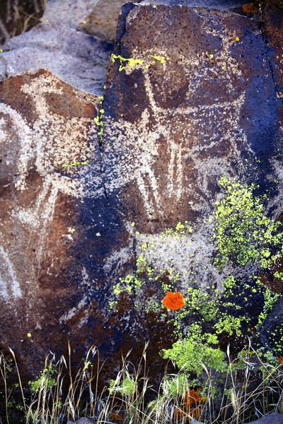 petroglyphs  - China Lake Naval weapons station, Ridgecrest ca