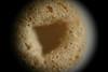 Cheerio (very shallow DoF at f/5.6)