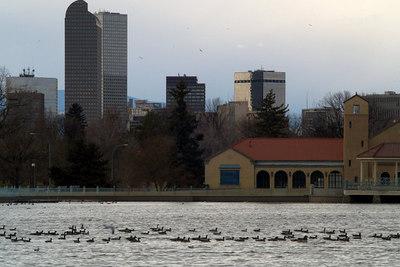 January - City Park