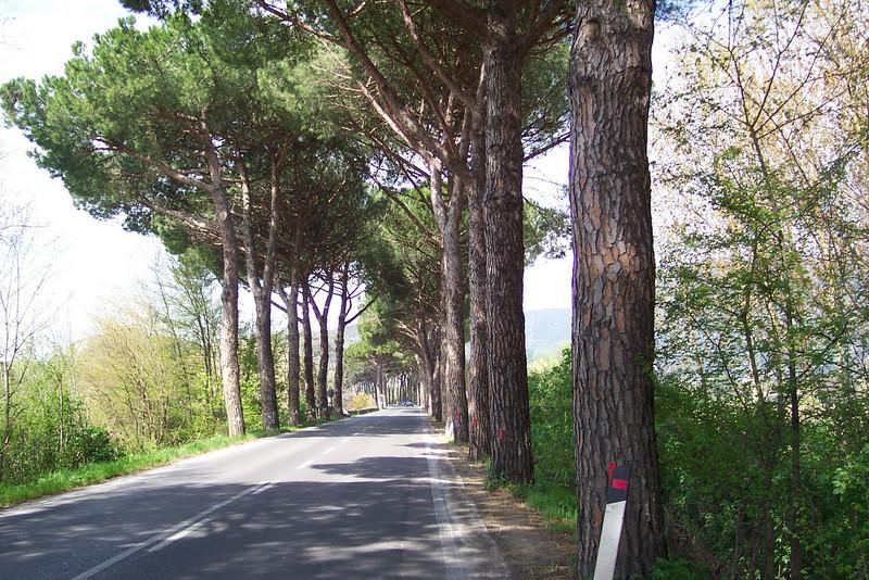 Italy 166.jpg