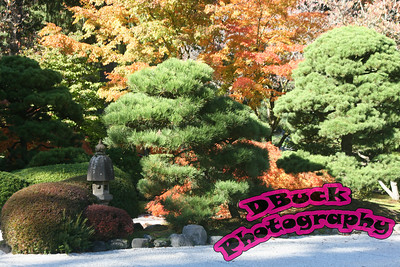 Japanese Garden 10-23-2007 114