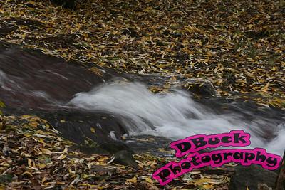 dawson creek 078