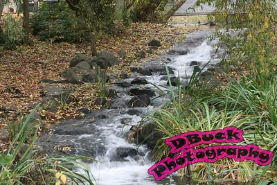 dawson creek 042