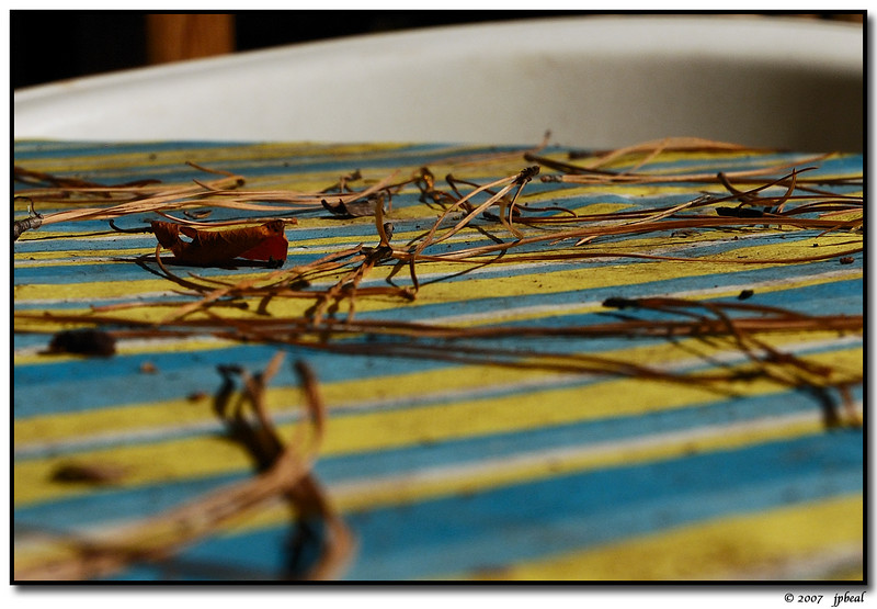 "29Sep07  patio table.  <a href=""http://carpelumen.smugmug.com/gallery/1832069/1/99018146/Medium"">one year ago.</a>  f/11, 6s, iso 200."