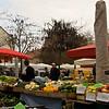 Fruit Square