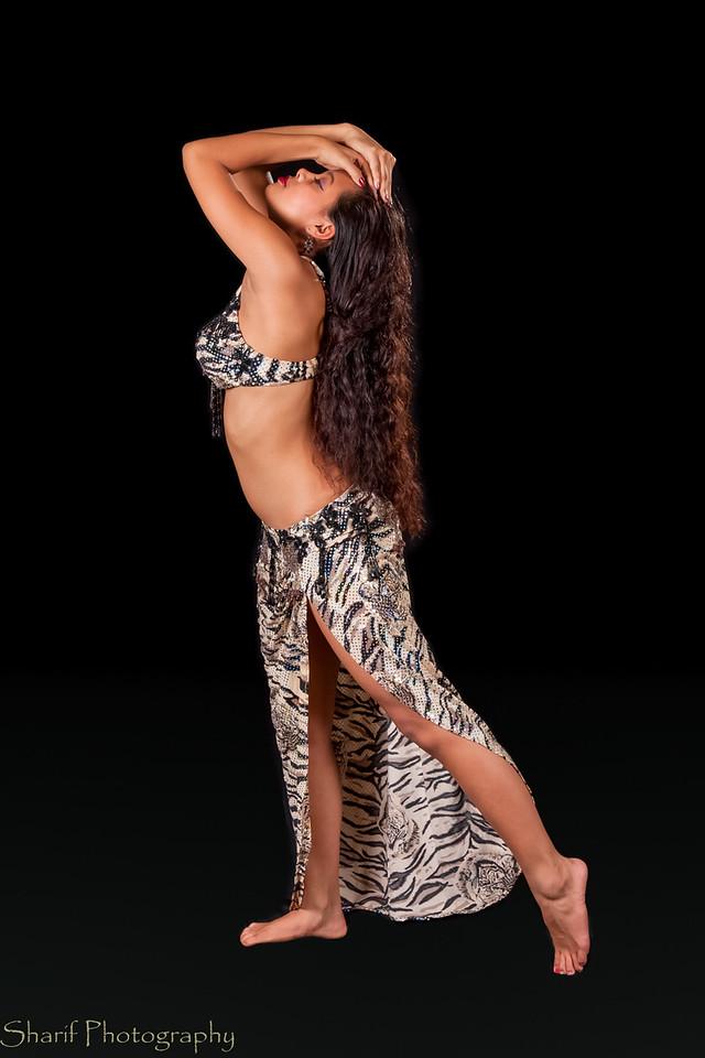 Young belly dancer in elegant pose