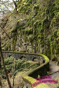 Multnomah Falls 11-30-2007 229