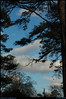 """<a href=""""http://carpelumen.smugmug.com/gallery/4261282_JhtMR/1/259633275_UbtWz/Medium"""">27Feb08</a>  alternate, sky unreflected."""