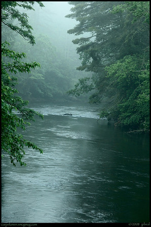 (1Jun08)  from yesterday morning: toccoa river, north georgia, before the mist burned off.  more from the weekend in Events>Outings.  f/11, 1/6s, iso 200.