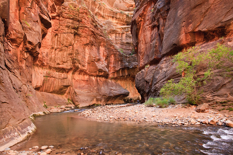 September 23, 2009<br /> Hiking Zion Narrows in Zion National Park. The gorge is reallt deep - two colored dots in the middle of the photo are two hikers crossing the stream. The Narrows are 16 miles long, up to 2000 feet deep, and at times only 20-30 feet wide. At least 50% of the hike is in water. The water is cold and rocks underfoot are slippery. But it's one of a kind experience.