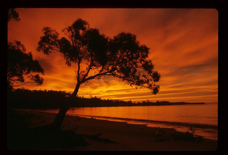 Sunrise near Orford, Tasmania, 1984.