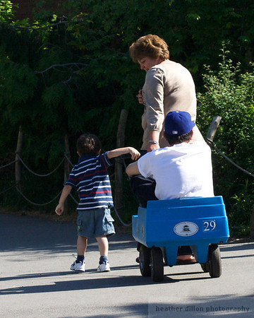 Every time I go to the zoo with Sydney I dream this might happen to me, where I finally get a turn in the wagon. It never has.