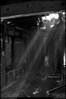 """25Apr09  stirred dust in sunlight.  <a href=""""http://carpelumen.smugmug.com/gallery/4634983_Fd547/2/285090680_aVhsZ/Medium"""">one year ago.</a>  f/7.1, 1/25s, iso 640."""