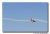 """Firebirds Aerobatic Team"""