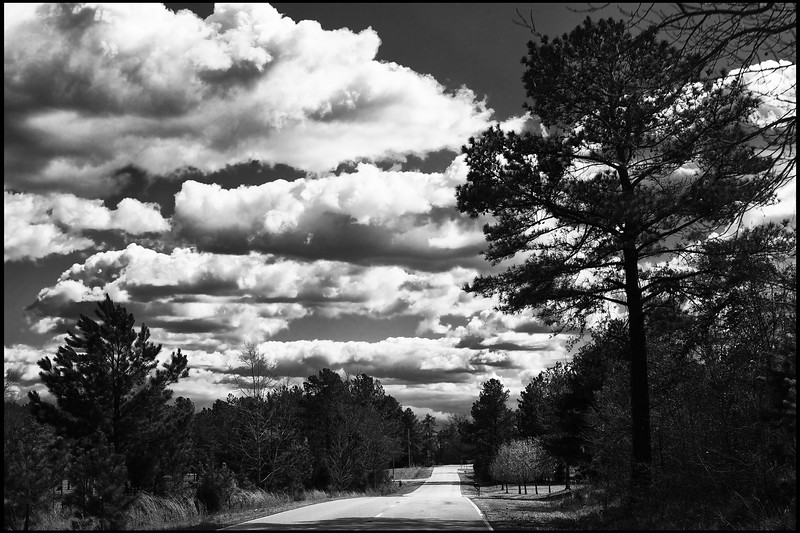 March, 2010<br /> <br /> A country road in South Carolina.