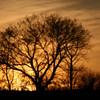 {29/365} January 29<br /> <br /> Winter Sunset