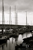 Port Townsend marina
