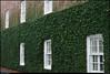 18Dec10<br /> <br /> corner of guignard & anson streets, charleston, sc.<br /> <br /> f/8, 1/50s, iso 640.